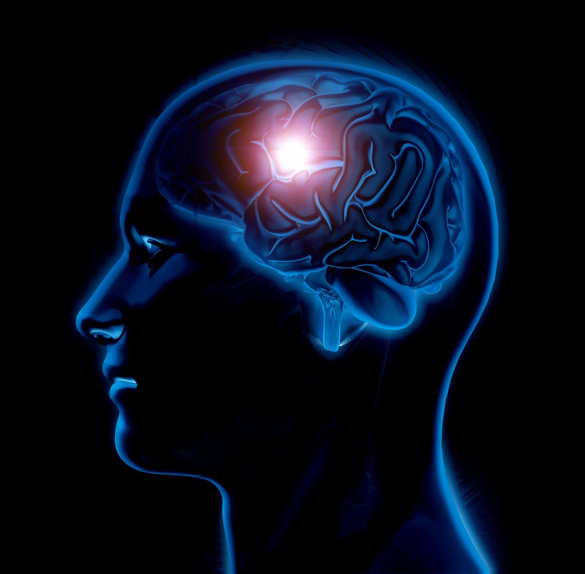 Hoe werkt u brain en ogen.